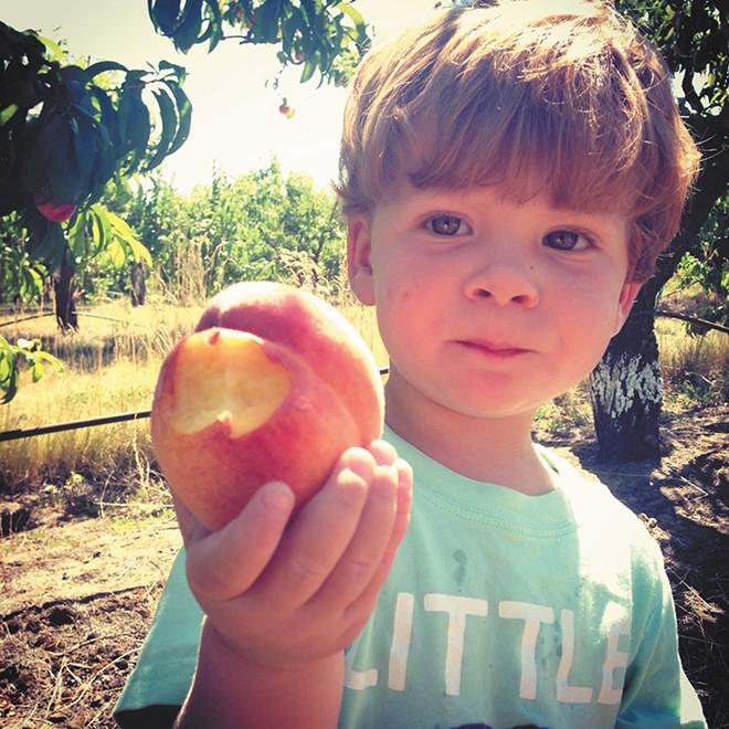 Walters' Fruit Ranch