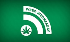 WEED WEDNESDAY: Year-end pot sales and fancy pot food