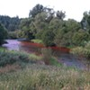 Why the Little Spokane River looks red