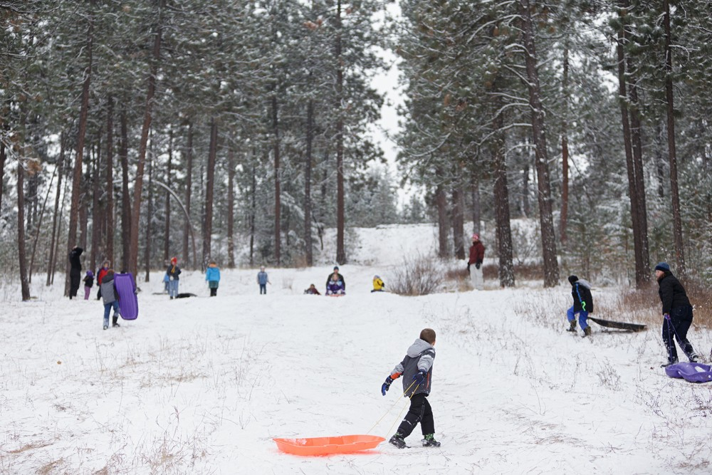 With a few inches of new snow on the ground, people sled at Underhill Park in Spokane. - YOUNG KWAK