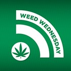 WW: Cannabis regulator sting, university gets weed prof, Oprah and Letterman talk pot