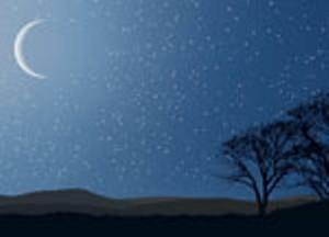 stars-moon-trees.jpg