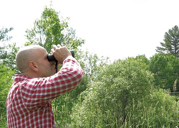 Birding with the Kids