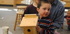 buildabluebirdbox707x346.jpg