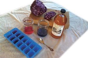 Cabbage-Juice Chemistry