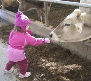 dairy_day.jpg