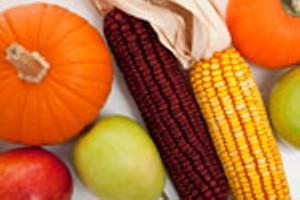 fall_pumpkins_gourds_apples.jpg