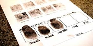 montshire_fingerprints.jpg