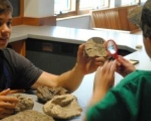 montshire_sd_fossils_sm150x1201.jpg