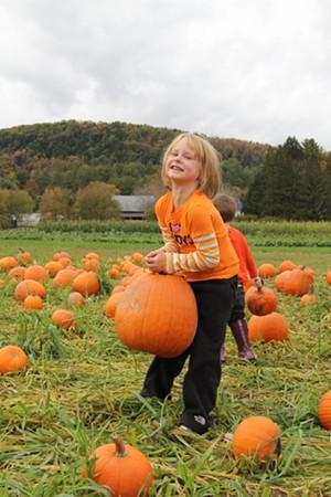 pumpkin_festival.jpg