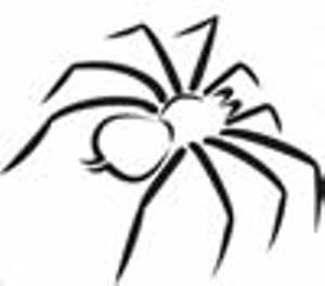 spidersafari.jpg