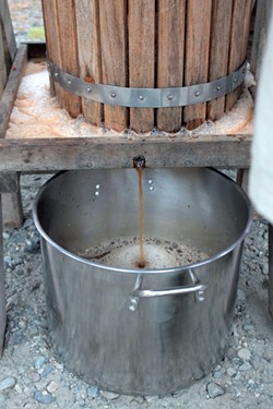 Cider collects in a stainless-steel pot - TRISTAN VON DUNTZ