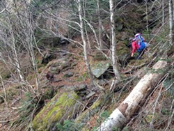 Tristan, Elise and Odin navigate one of several stream crossings while climbing Mt. Mansfield - SARAH GALBRAITH