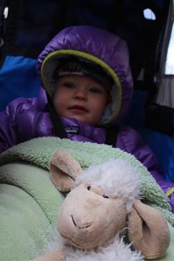 Elise snuggled into her bike trailer - TRISTAN VON DUNTZ