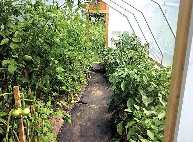 The greenhouse in warmer months. - COURTESY OF THE ZEILENGA FAMILY