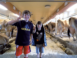 Leo and Felix at Billings Farm - BENJAMIN ROESCH