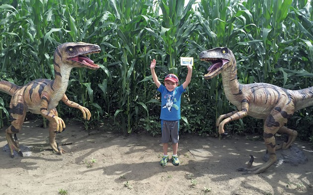 Inside the Great Vermont Corn Maze - COURTESY OF GREAT VERMONT CORN MAZE
