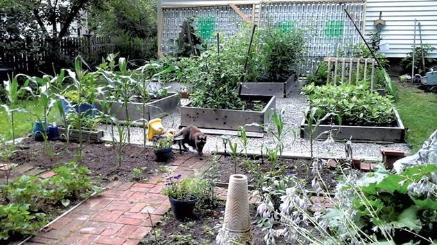 Greenhouse frames in progress
