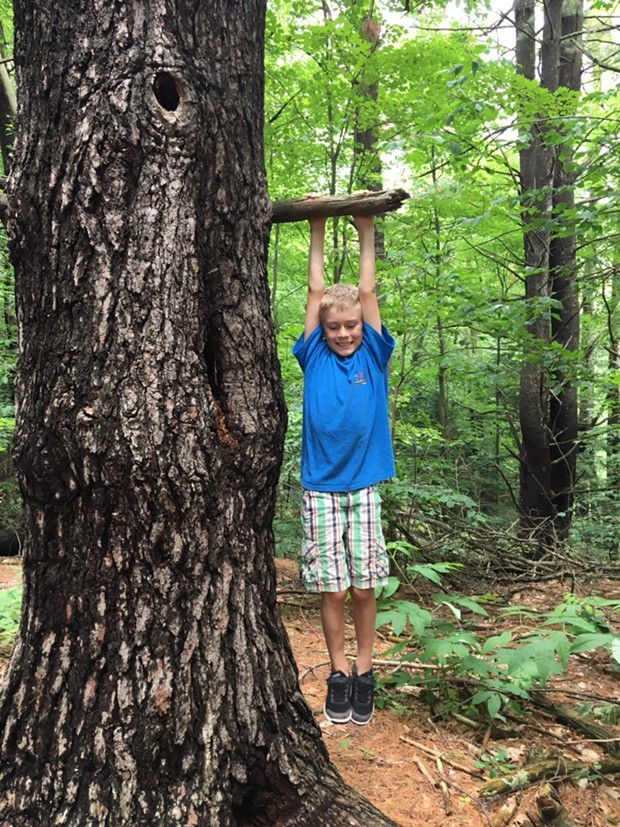 8-year-old Harper explores the East Woods - SARAH TUFF DUNN