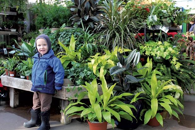 Russ in the greenhouse - KATIE TITTERTON