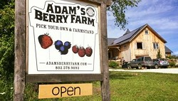 COURTESY OF ADAM'S BERRY FARM