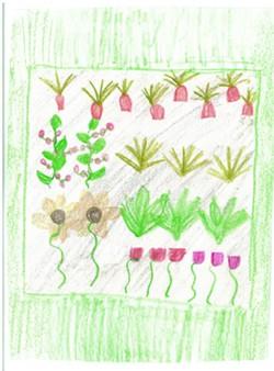 garden_picture.jpg