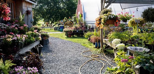Cedar Circle Farm and Education Center - COURTESY