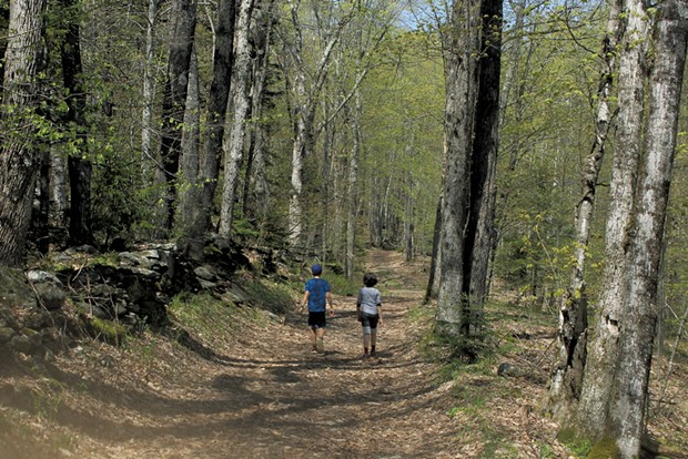 Heather's son Jesse and friend Scarlett exploring the trails at Little River State Park - HEATHER FITZGERALD