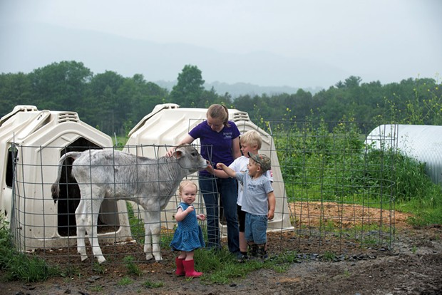 Cousins (oldest to youngest) Ashlynn Foster, Rowdy and Remy Pope, and Allegra Ouellette visit a calf - CALEB KENNA