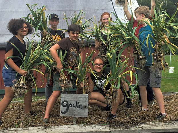 Food, Farm, and Society students celebrate the garlic harvest in Montpelier - COURTESY OF TOM SABO