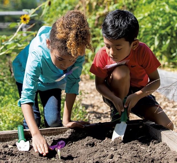 Kids tend a school garden in Burlington - COURTESY OF SARAH WEBB FOR VERMONT FEED