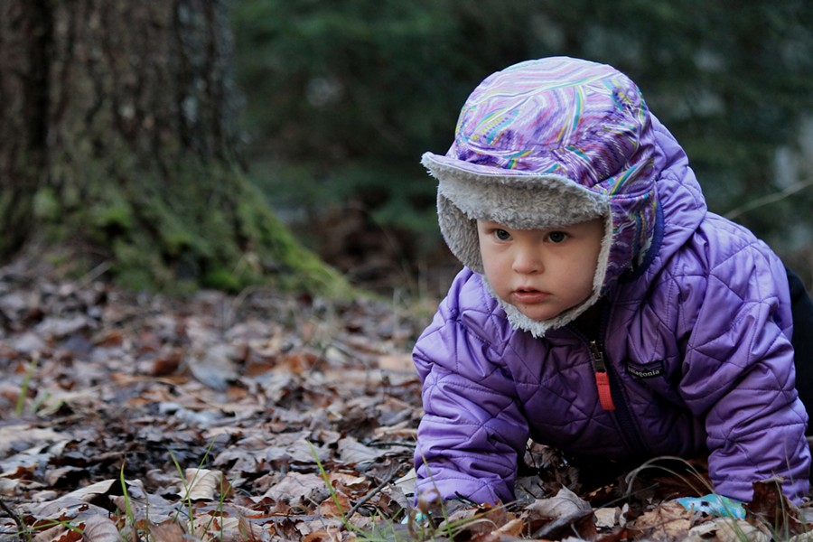One-year-old Elise explores the forest - TRISTAN VON DUNTZ