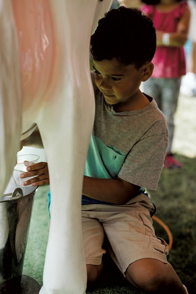 Amani Yates, 9, of Rouses Point, N.Y., tries his hand at the milking machine. - SAM SIMON