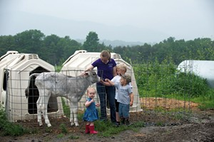 Cousins (oldest to youngest) Ashlynn Foster, Rowdy and Remy Pope, and Allegra Ouellette visit a calf