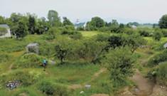 Backyard Bike Park