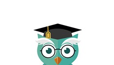 Snowy Owl Tutoring Lets Students Log On to Learn