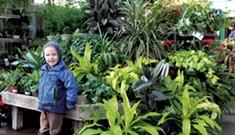 Destination Recreation: Gardener's Supply Company