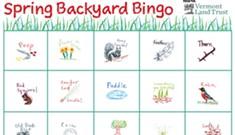 Play Spring Bingo!
