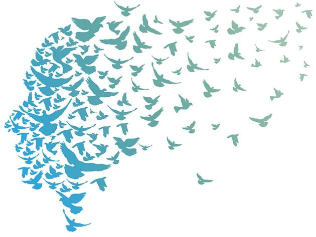 Fledglings: Watching my Children Fly Away