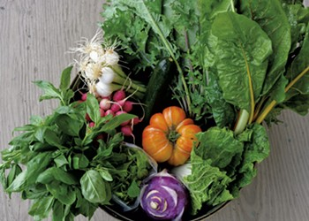 Tips for Growing Your Own Garden, Supporting Local Farmers