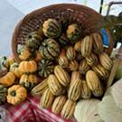 Capital City Farmers Market
