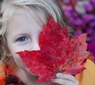 Morning Magic: A Preschool & Kindergarten Experience
