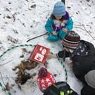 Winter Wildlife Detectives