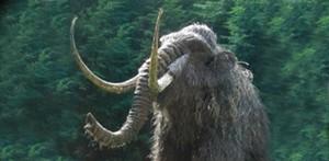 pm-mammoth-704x345.jpg