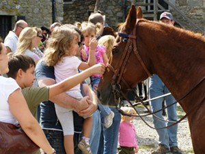 heritage-harvest-and-horse.jpg