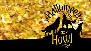 halloweenhowlfbheader1.jpg