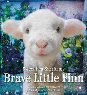 brave_little_finn_cover.jpg