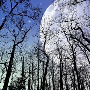 moon-1435140_1280.jpg