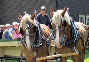 wagonride13crop.jpg