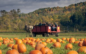 horsedrawn_rides_to_pumpkin_patch_at_cedar_circle_farm_by_ben_fleishman.jpg